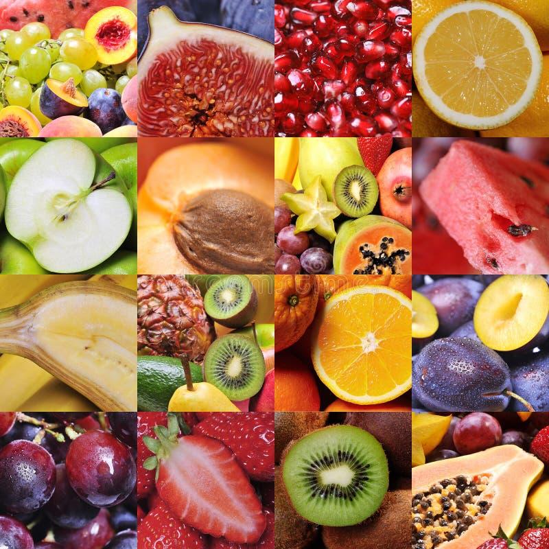 Colagem da fruta foto de stock royalty free