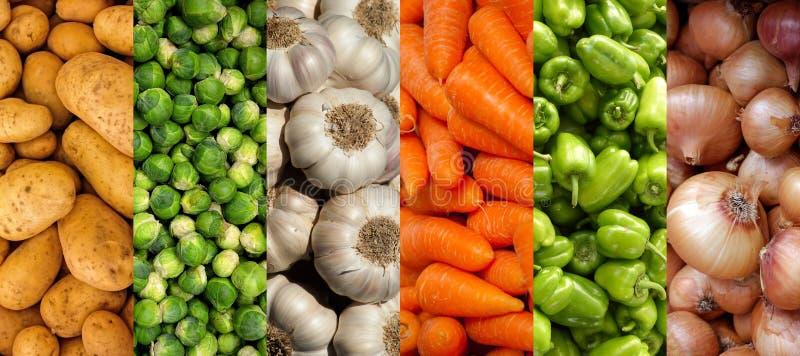 Colagem da imagem horizontal das texturas dos vegetais fotografia de stock