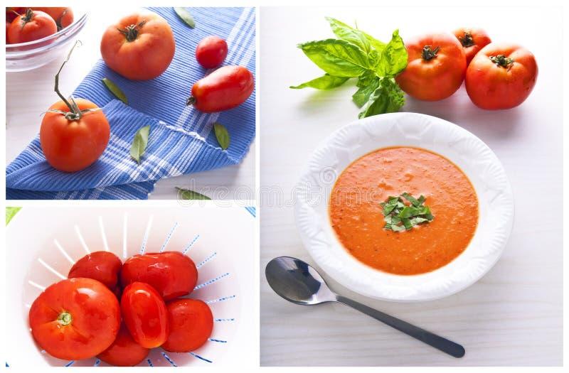 Colagem da sopa do tomate imagens de stock