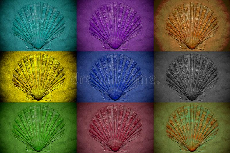 Colagem das conchas do mar tratadas com os filtros de cor diferentes fotografia de stock