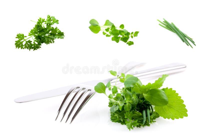 Colagem das ervas e da cutelaria imagem de stock