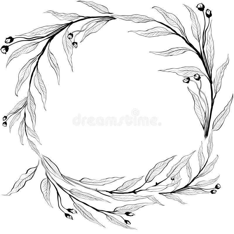 Colagem das flores e das folhas em um fundo branco Use materiais impressos, sinais, artigos, Web site, mapas, cartazes, cartão, p ilustração stock
