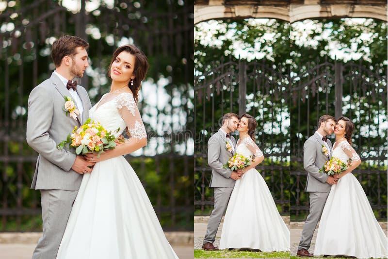Colagem das fotos do casamento Noiva e noivo imagens de stock