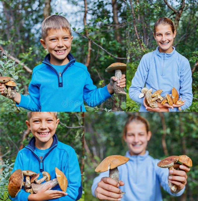 A colagem de crianças bonitos das imagens com cogumelo selvagem encontrou na floresta foto de stock royalty free
