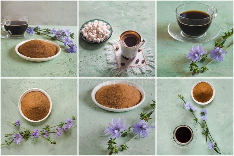 Colagem de diferentes imagens de café de Chicago Substituto ao café tradicional, bebida à base de plantas de chicória imagens de stock