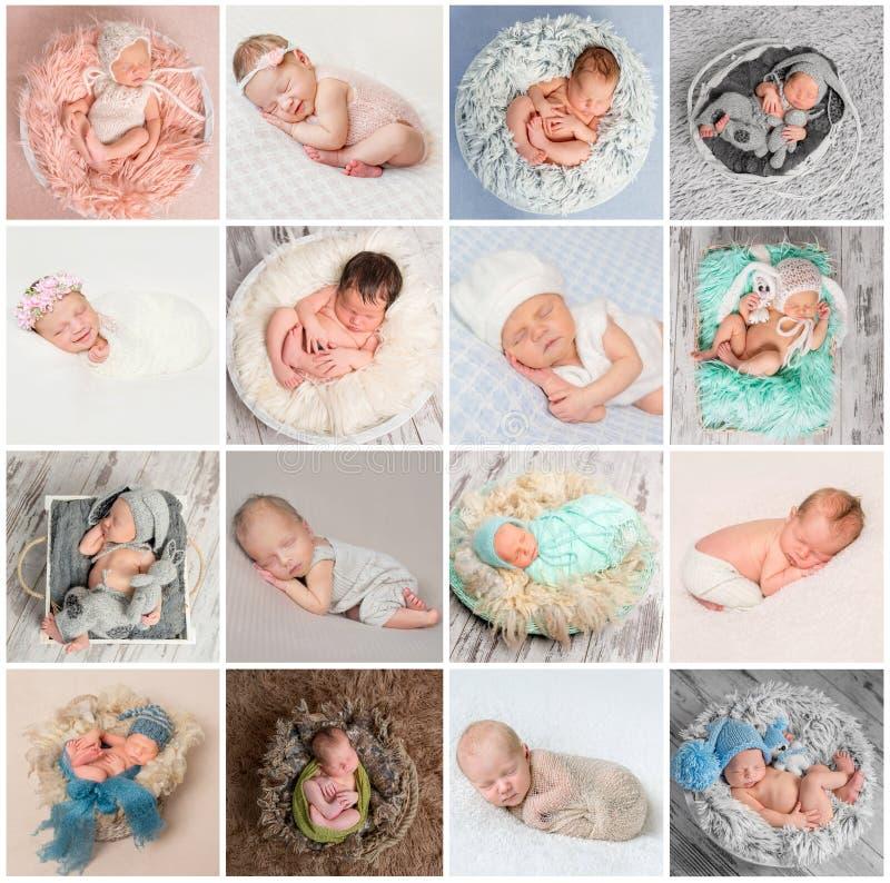 Colagem de fotos recém-nascidas dos bebês fotos de stock