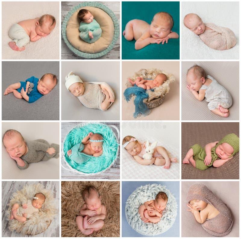 Colagem de fotos recém-nascidas dos bebês imagem de stock