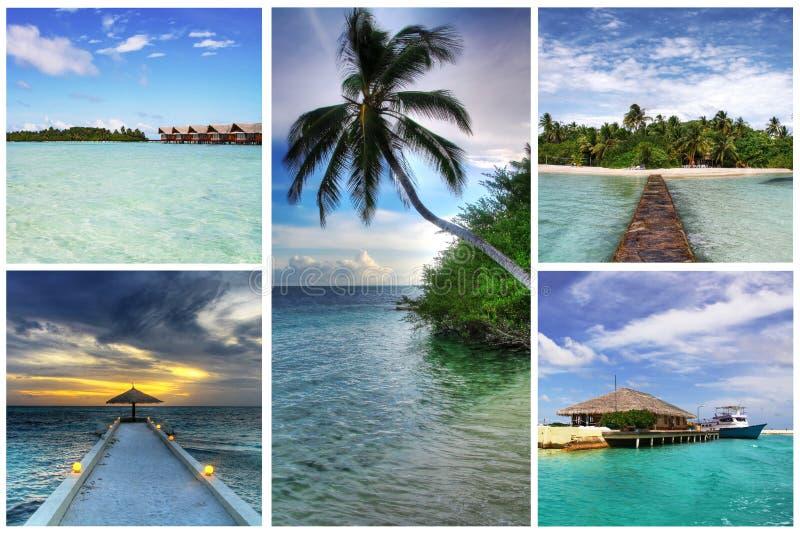 Colagem de Maldives foto de stock