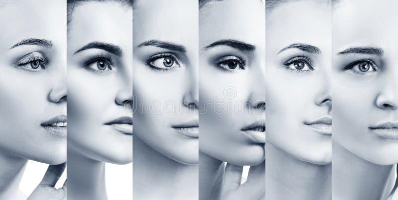 Colagem de mulheres bonitas com pele perfeita fotografia de stock