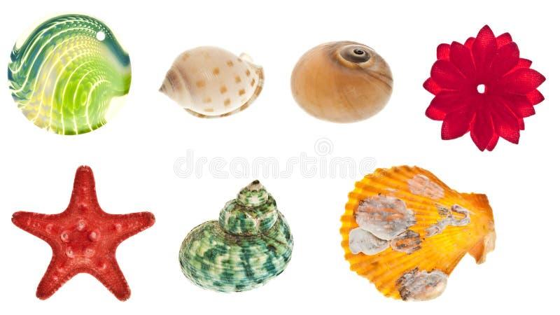 Colagem de objetos do mar foto de stock royalty free