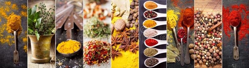 Colagem de várias ervas e especiarias foto de stock