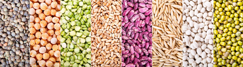 Colagem de vários cereais, de sementes, de feijões e de grões foto de stock