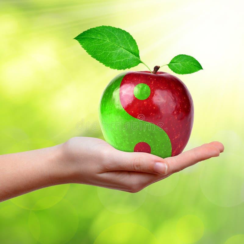 Colagem de Yin Yang da maçã imagens de stock royalty free