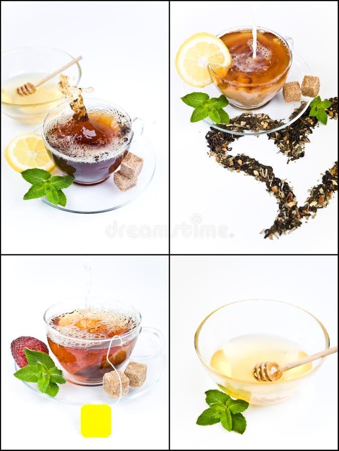 Colagem do chá fotografia de stock royalty free
