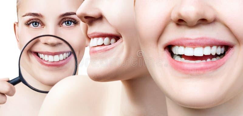 Colagem do close up fêmea perfeito dos dentes com espaço do texto fotos de stock royalty free