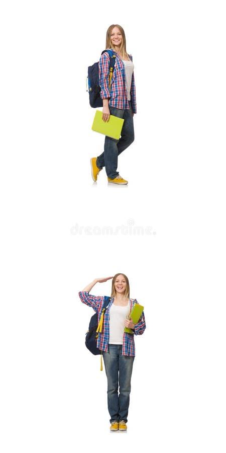 A colagem do estudante fêmea novo no branco foto de stock royalty free