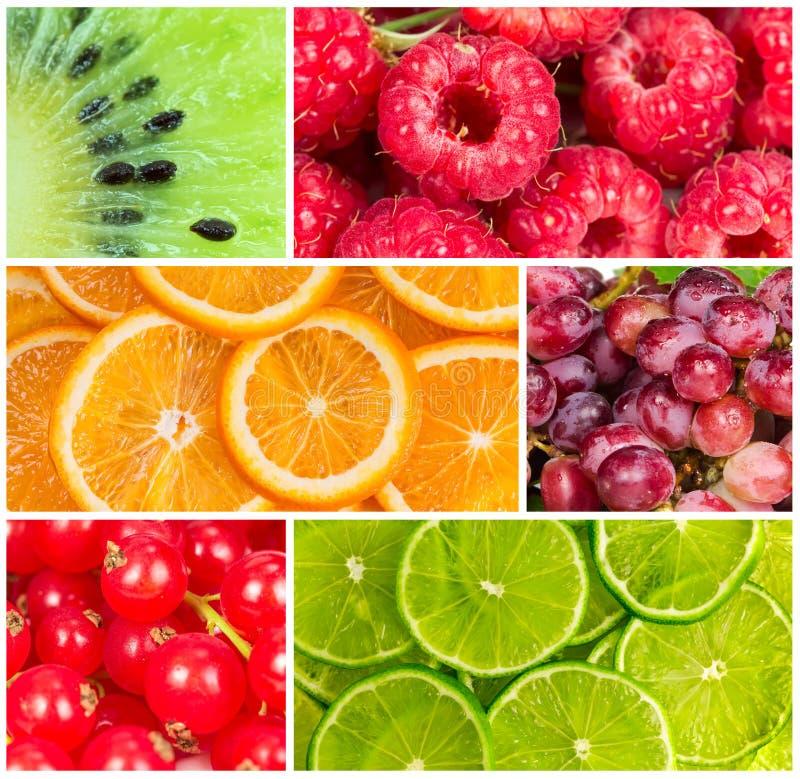 Colagem do fruto fresco do verão imagens de stock
