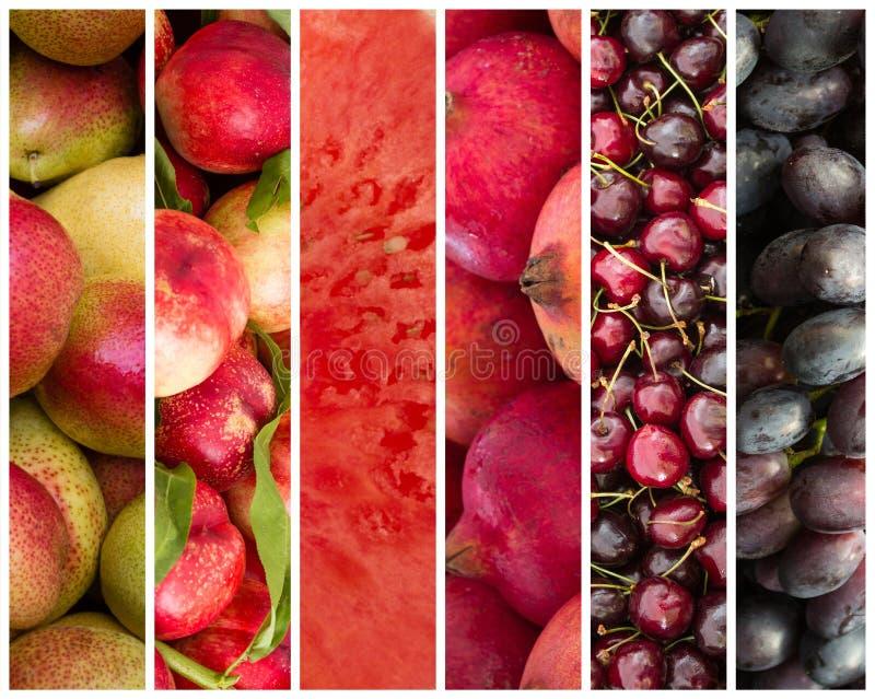 Colagem do fruto - fundo do alimento imagem de stock royalty free