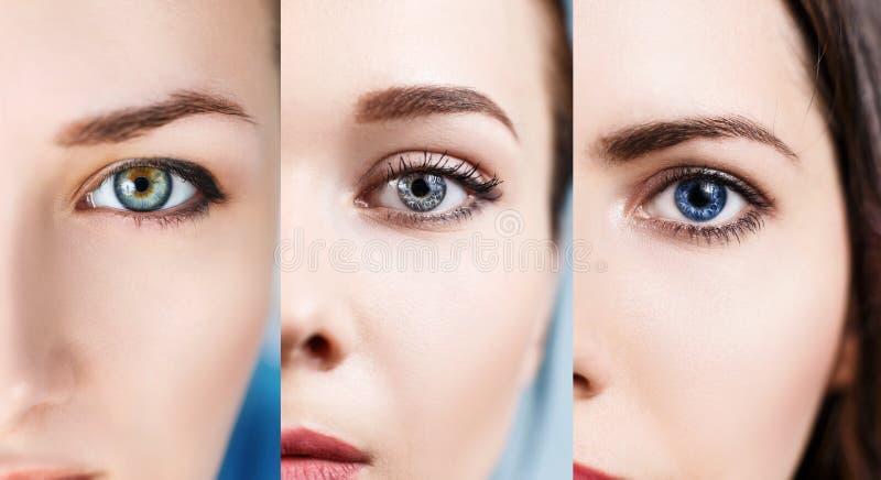 Colagem dos olhos coloridos imagem de stock