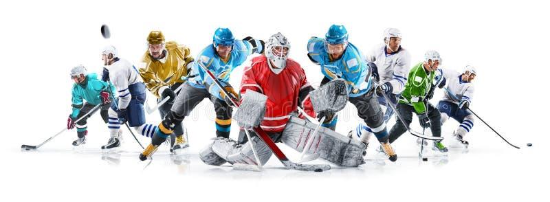 Colagem grande do h?quei em gelo com os jogadores profissionais no fundo branco fotos de stock royalty free