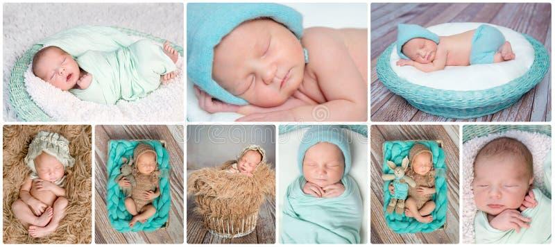 Colagem recém-nascida dos bebês do sono foto de stock