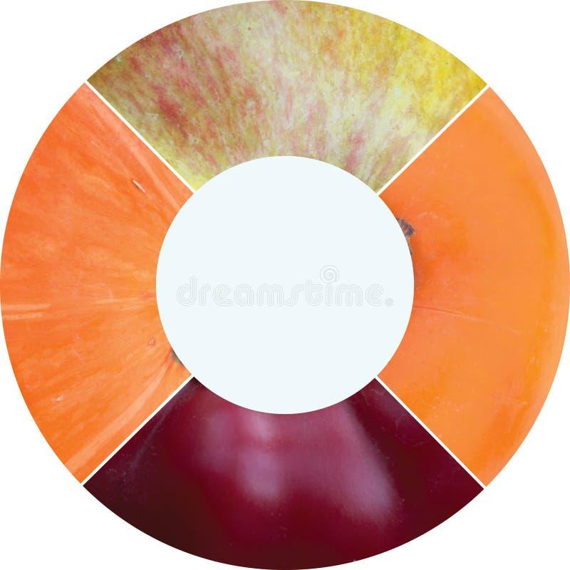 Colagem redonda da foto do círculo feita dos produtos ervais do verão imagens de stock royalty free