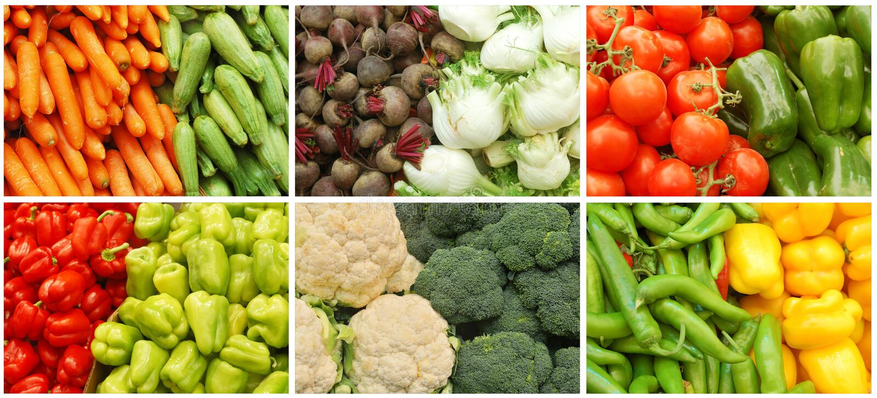 Colagem vegetal fotografia de stock royalty free
