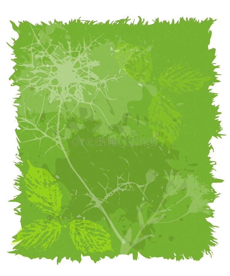 Colagem verde opaca do papel da folha ilustração do vetor