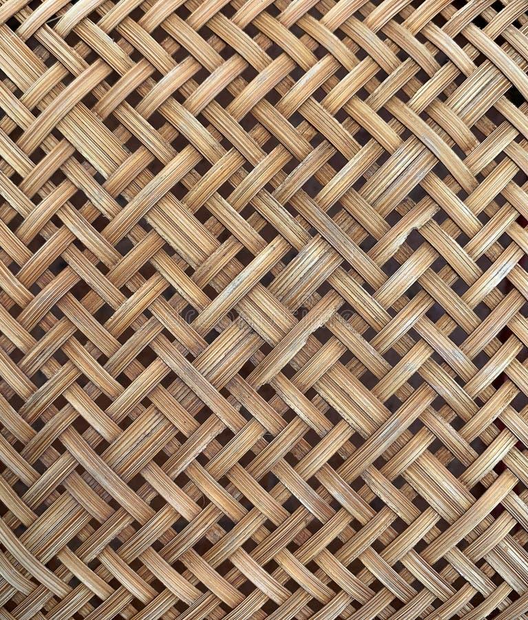 Colapasta di bamb? fotografie stock
