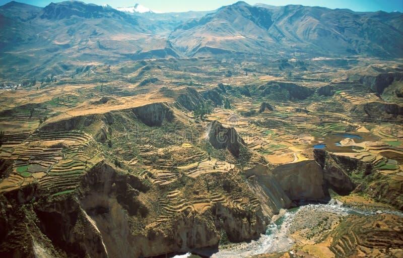 colca каньона стоковое изображение rf