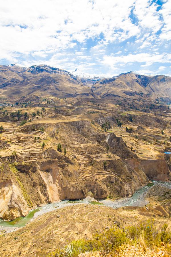 Colca Canyon, Peru,South America. Incas to build Farming terraces with Pond and Cliff. One of deepest canyons in world. Colca Canyon, Peru,South America. Incas stock photo
