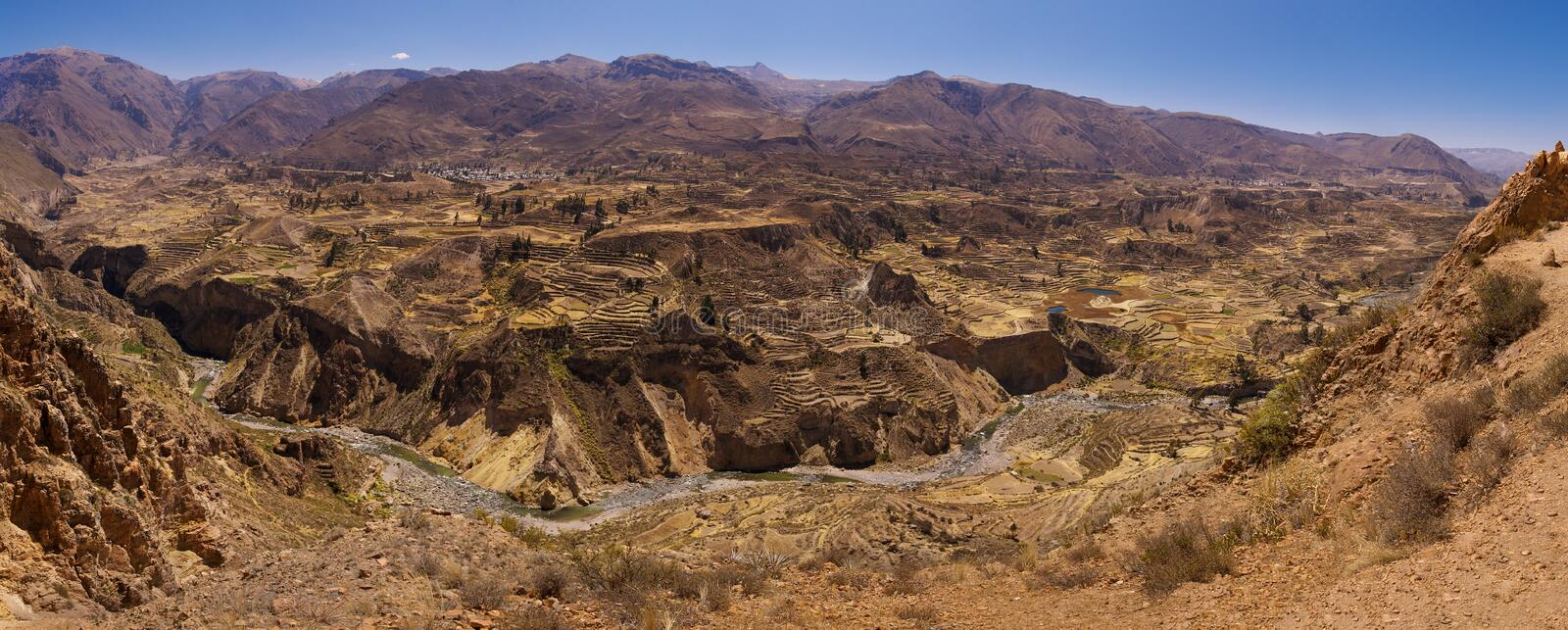 Colca Canyon terraces stock image