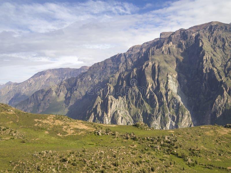 Colca jar, Arequipa, Peru. obraz royalty free