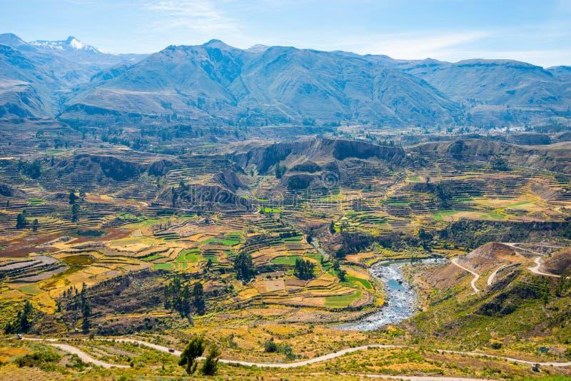 Colca kanjon, Peru, Sydamerika En av de djupaste kanjonerna i världen royaltyfri fotografi