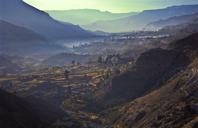 Colca Valey - terrazzo del Inca - Condors si dirige #2 fotografie stock libere da diritti