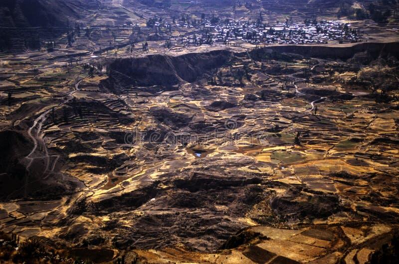 Colca Valey - terrazzo del Inca - Condors si dirige #3 fotografia stock libera da diritti
