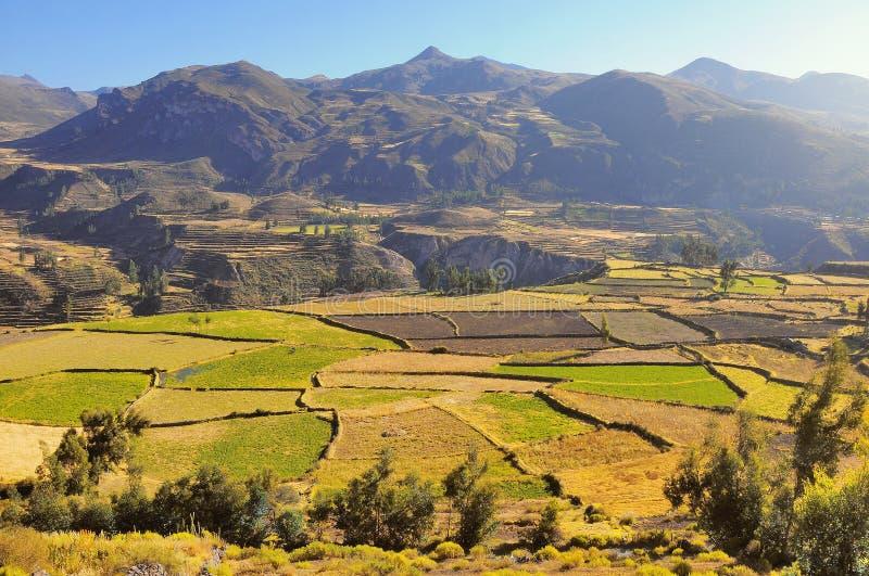 Colcacanion, Peru, Zuid-Amerika royalty-vrije stock fotografie