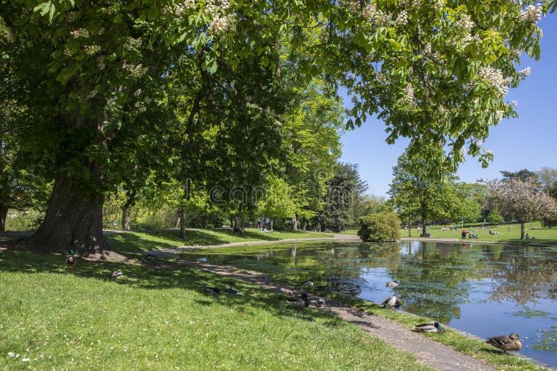 Colchester-Schloss-Park in Essex stockbild