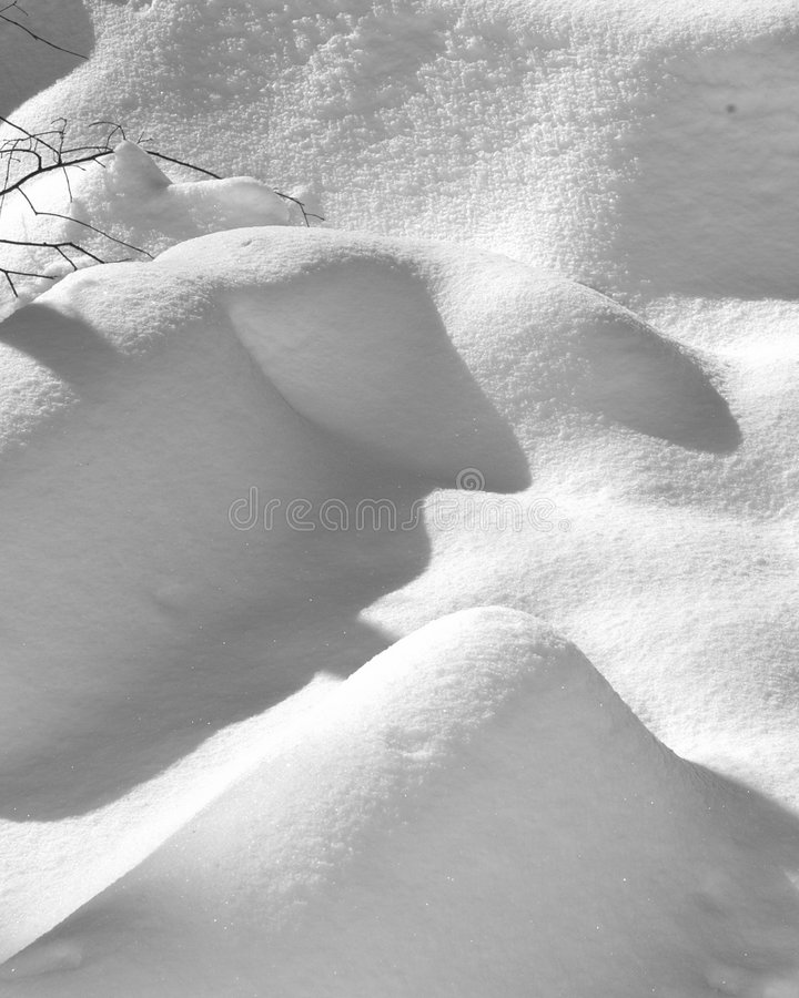 Download Cold stock photo. Image of michigan, forest, winter, drift - 104370