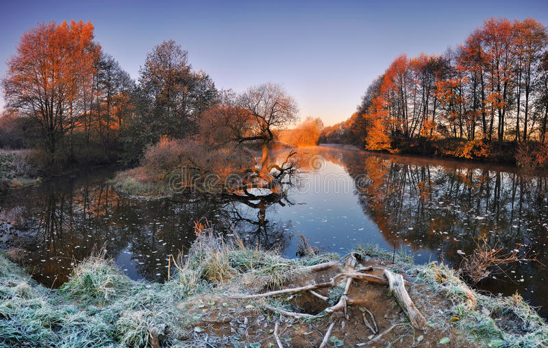 Cold autumn morning with a river in Belarus.Panoramic views of the river and lonely yellowed oak.The first rays of the sun illumin stock photo