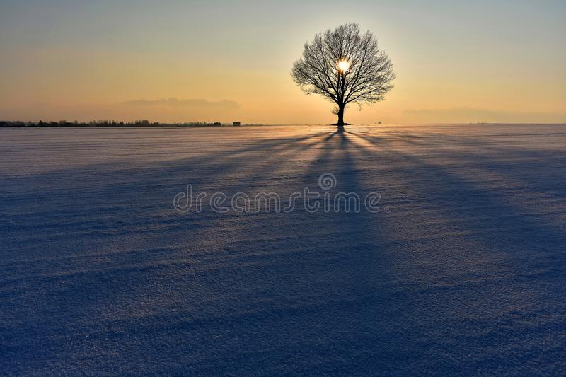 Cold ,but colorful winter evening in Lithuania. royalty free stock photo