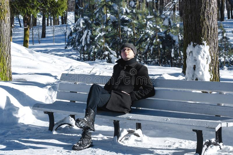 Cold colours. Man in the park. Pines. Man with glasses. Winter man. stock photo