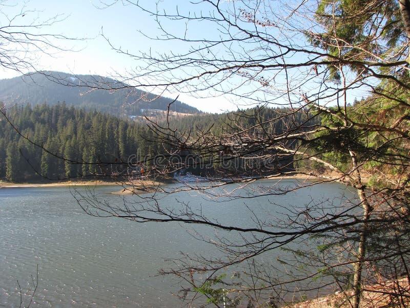Autumn mountain landscape on the lake shore stock image