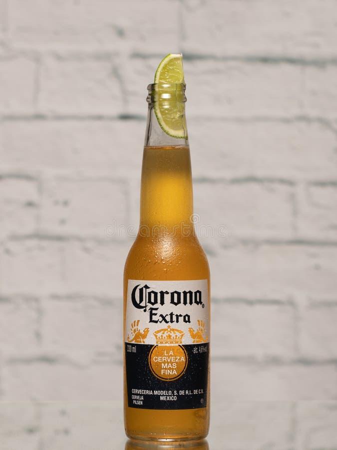 Cold corona beer. Bottle of cold corona beer stock photo