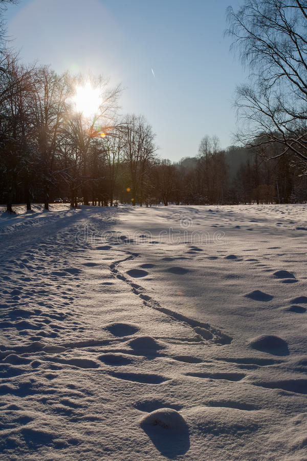 Cold Day Royalty Free Stock Photography