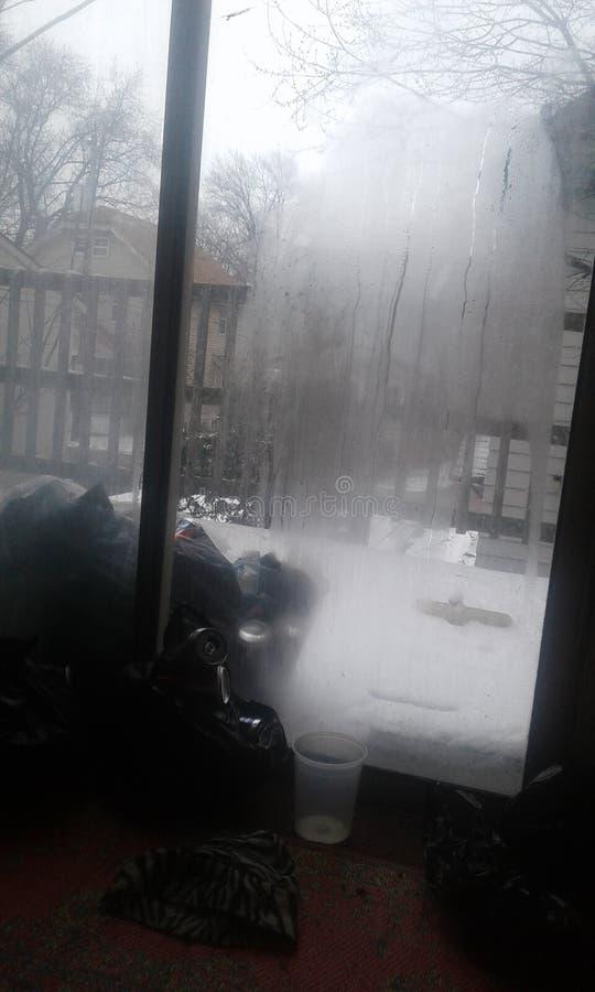 Snowing stock photo