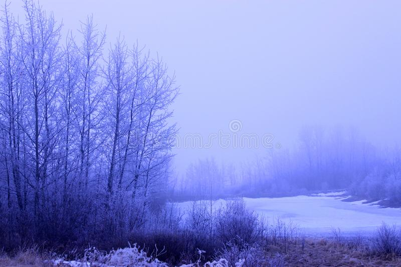 Cold Foggey Winter Morning Landscape With Frozen Lake royalty free stock images