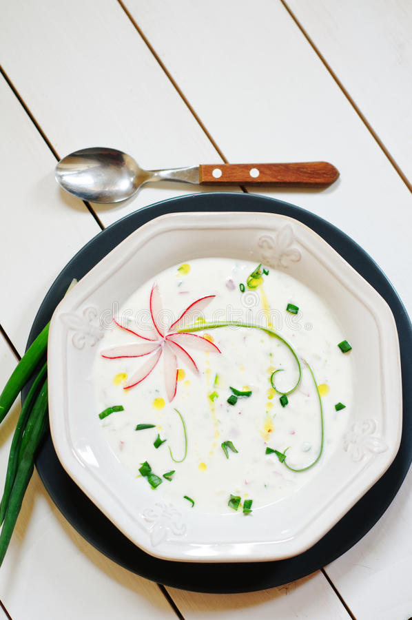 Cold fresh soup with yogurt and vegetables royalty free stock images
