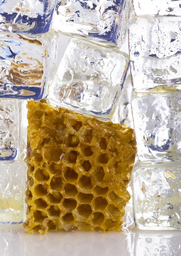 Cold honey comb