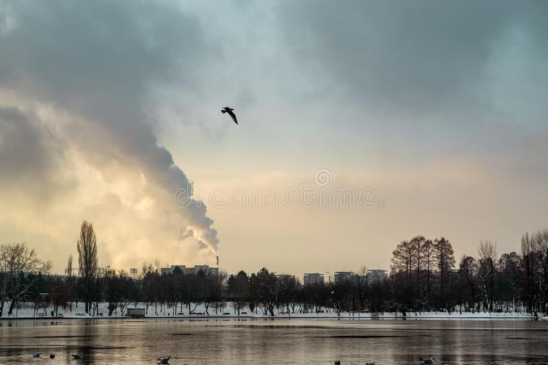 IOR Park. Cold morning IOR Park, Bucharest, Romania in winter stock images